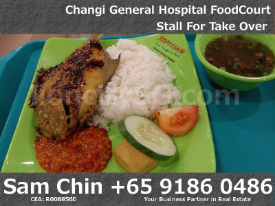 Kopitam Food Court – Changi General Hospital -Ayam Penyet