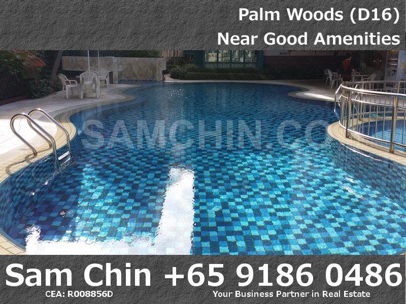 Palmwoods – Lap Pool – 3