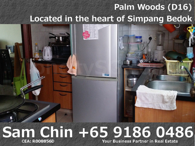 Palmwoods – S02 – Kitchen