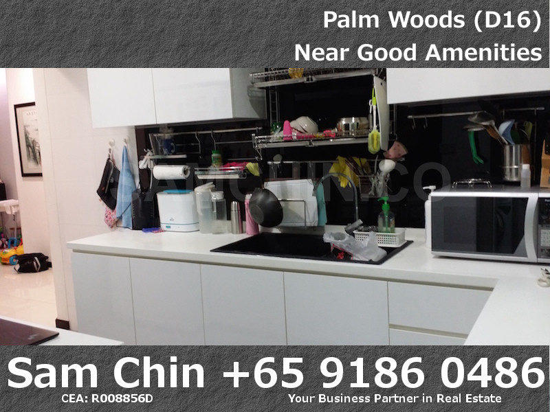 Palmwoods – S16 – Kitchen